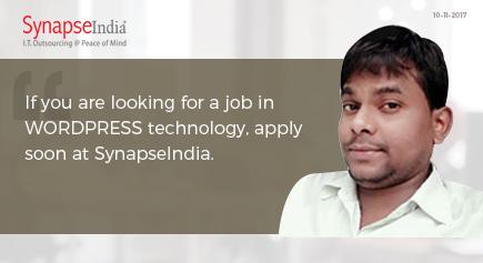 SynapseIndia Jobs 13