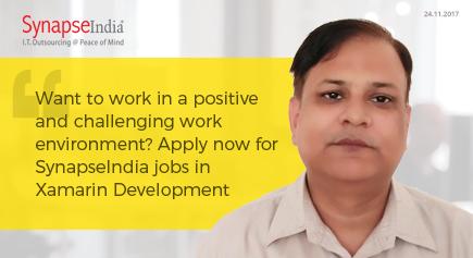 SynapseIndia Jobs 23
